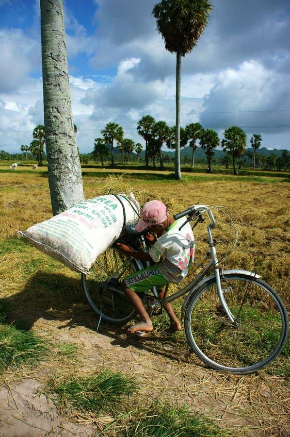 Kinderarbeit an der Asien-Armelandschaft stockfotos