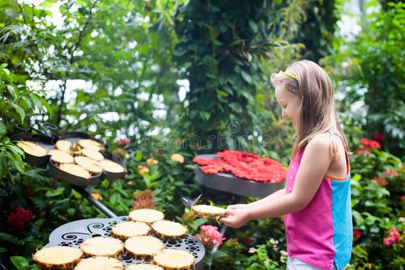 Kinderaufpassender Schmetterling am tropischen Garten lizenzfreie stockfotografie