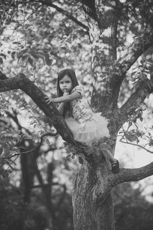 Kinderaufstiegsbaumast im Sommergarten, -geheimnis oder -ruhe stockfoto