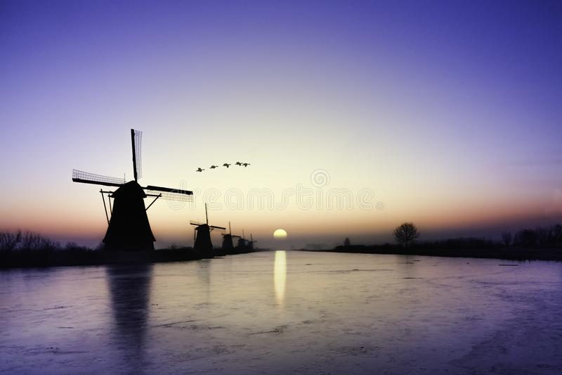 Kinderdijk - gansos que vuelan sobre salida del sol en la alineación congelada de los molinoes de viento fotografía de archivo libre de regalías
