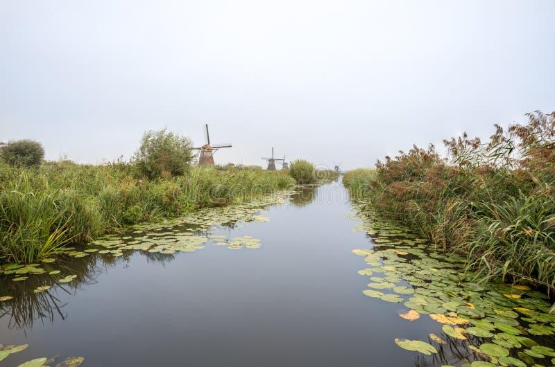 Kinderdijk in Olanda immagine stock