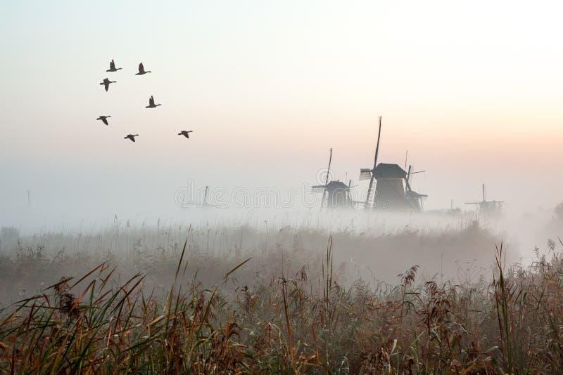 Kinderdijk w Holland obraz stock