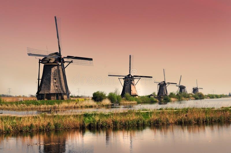 Kinderdijk windmills royalty free stock image