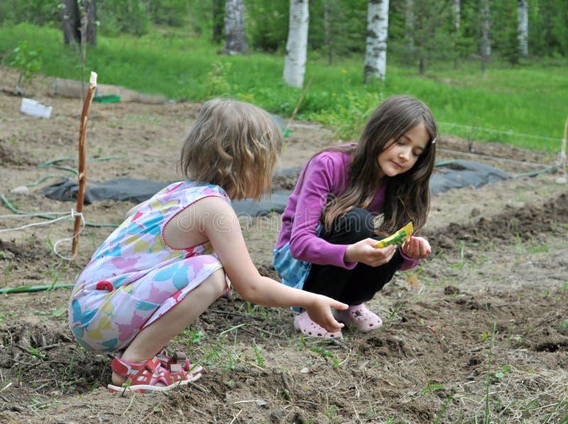 Kinderen in de tuin royalty-vrije stock afbeeldingen