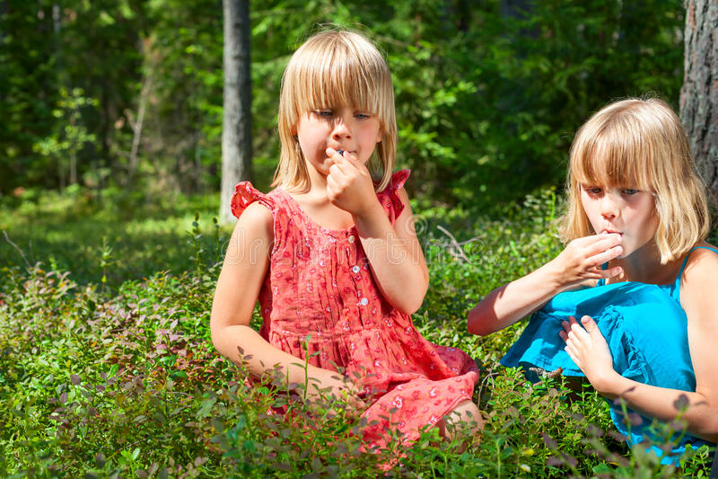 Kinderen die bessen in een de zomerbos plukken stock afbeeldingen