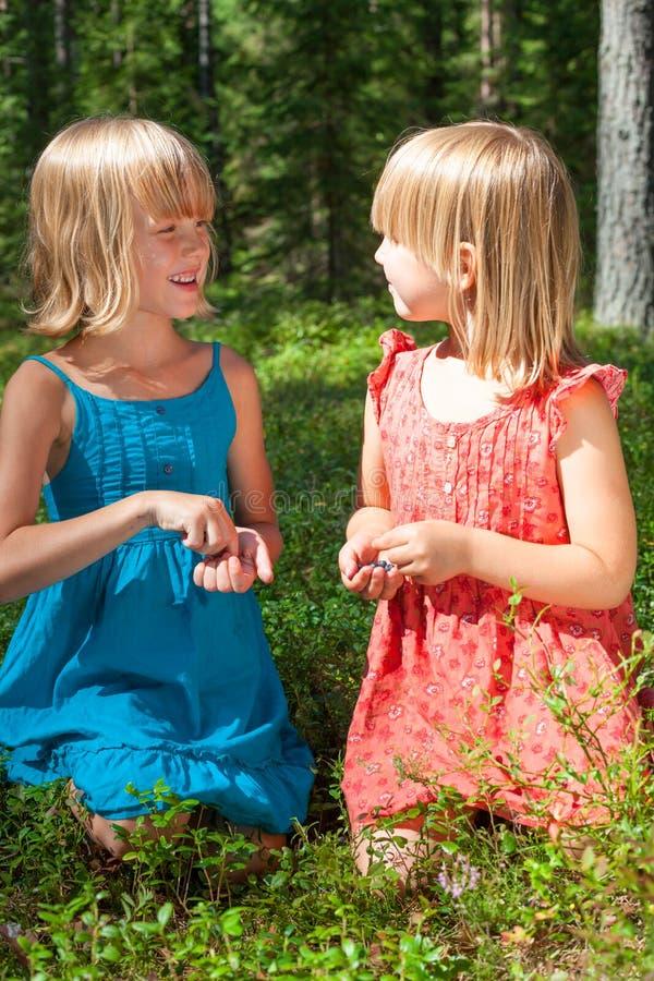 Kinderen die bessen in een de zomerbos plukken stock afbeelding