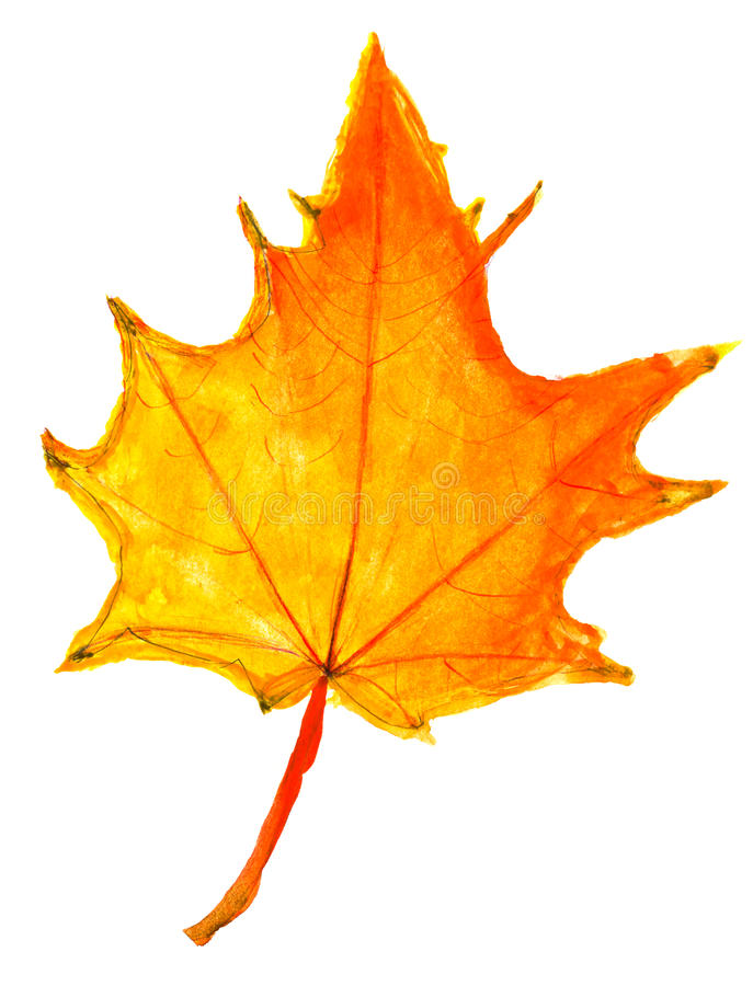 Kinderen die - blad van de de herfst het gele esdoorn trekken stock afbeelding