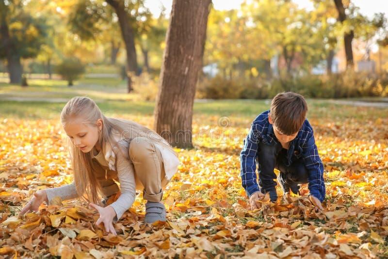 Kinderen die met bladeren in de herfstpark spelen royalty-vrije stock afbeeldingen