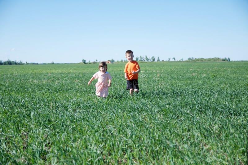 Kinderen die op gebied op groen gras bij de gelukkige zomer lopen, glimlachend twee jonge geitjes - broer en zuster stock afbeelding