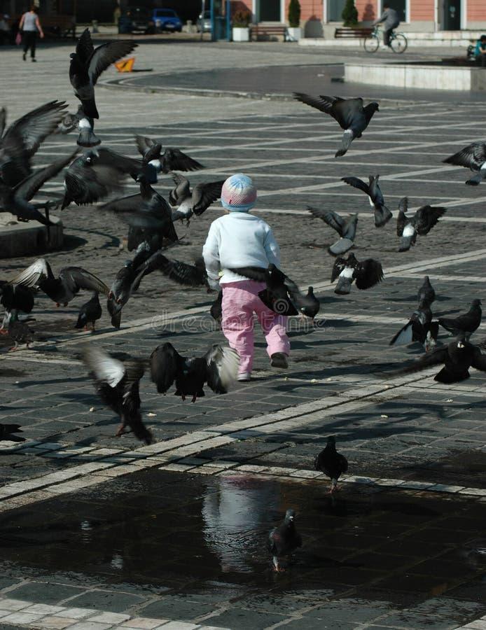 Kinderen en duiven
