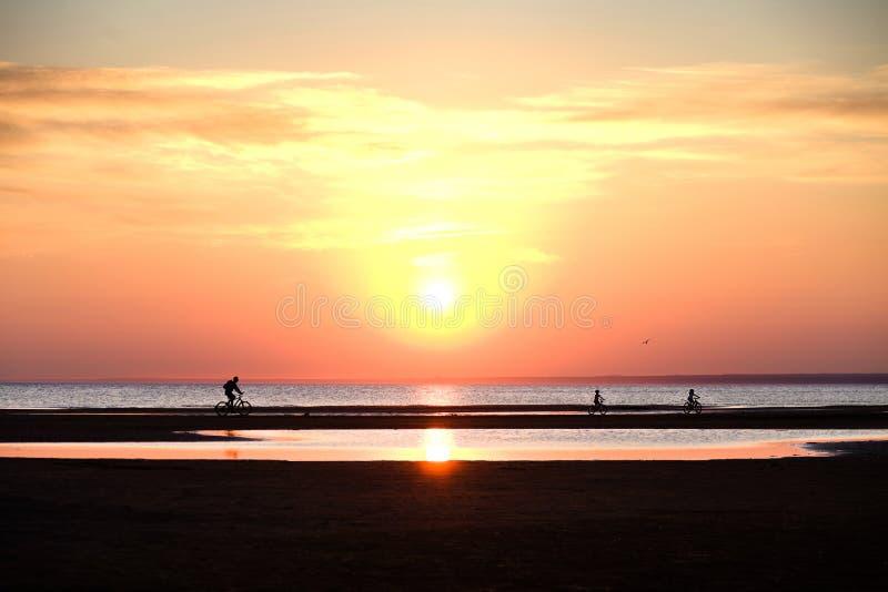 Kinderen en een personenvervoer een fiets op het strand bij zonsondergang royalty-vrije stock foto's