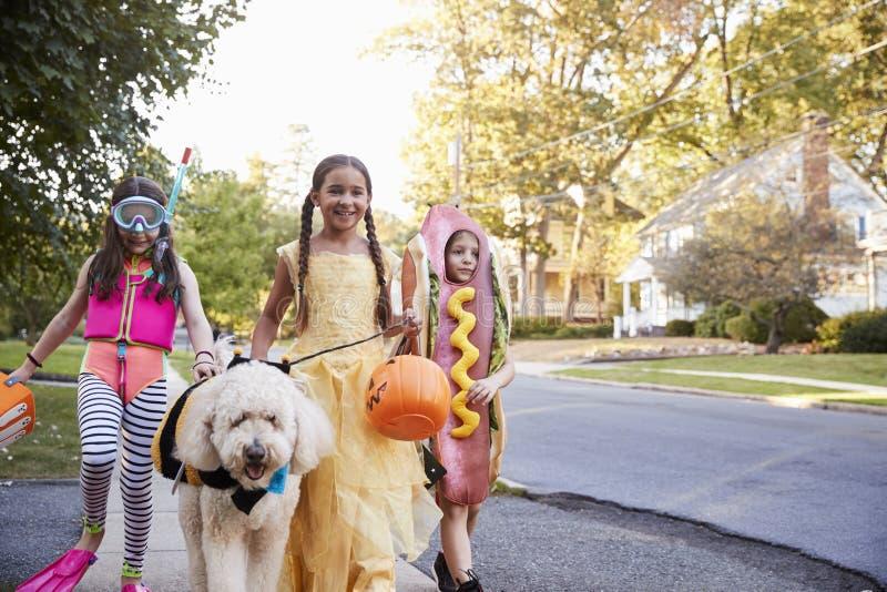 Kinderen en Hond in Halloween-Kostuums voor Truc of het Behandelen stock afbeeldingen