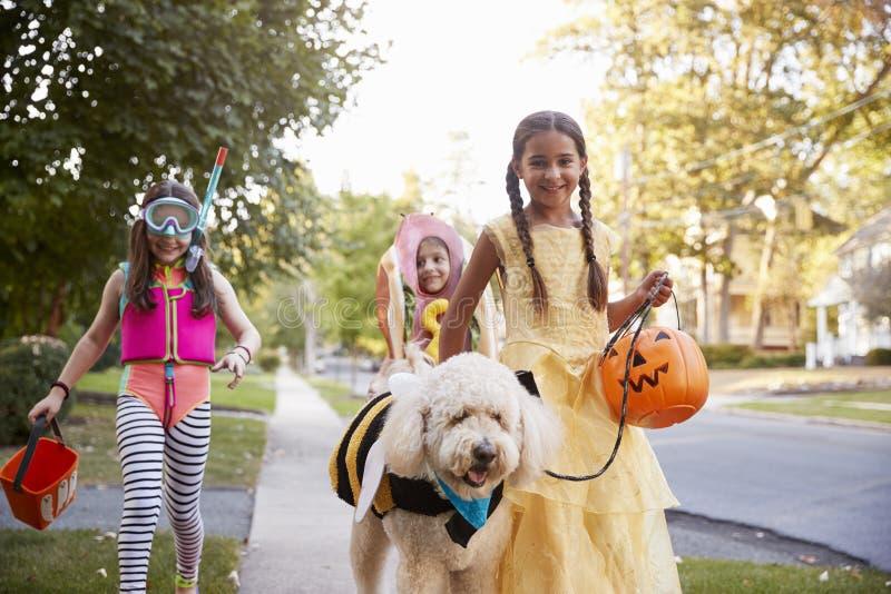 Kinderen en Hond in Halloween-Kostuums voor Truc of het Behandelen royalty-vrije stock afbeeldingen