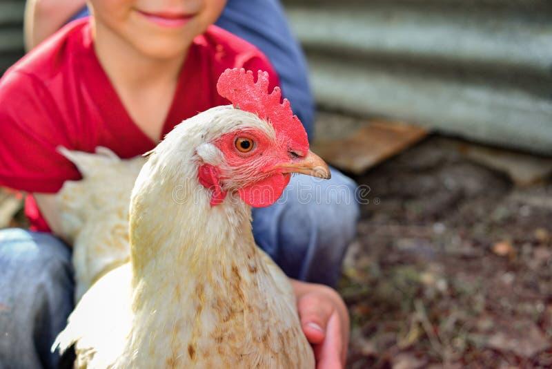 Kinderen en kippen in het kippenhuis, blije jongen die een kip in zijn handen houden Het concept mensenzorg voor aard royalty-vrije stock foto
