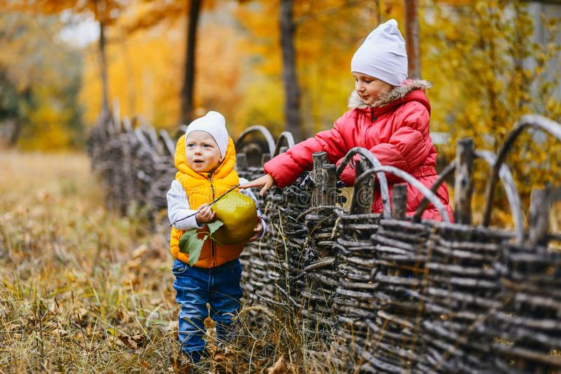 Kinderen in gekleurde jasjesgang in het de herfstpark stock afbeelding