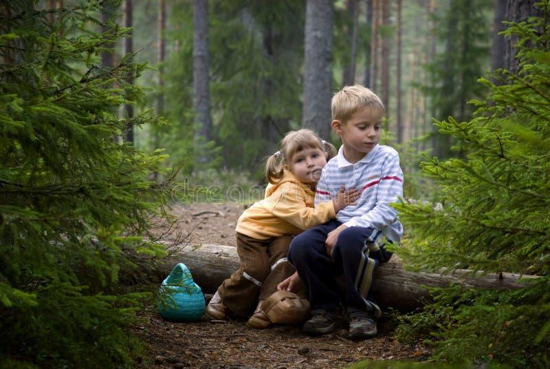 Kinderen in het bos royalty-vrije stock foto's