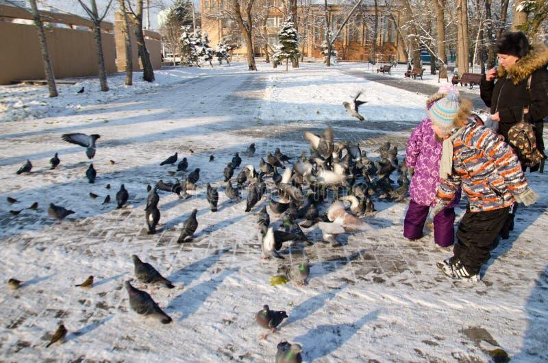 Kinderen in het Park die de vogels in de winter voeden royalty-vrije stock afbeelding