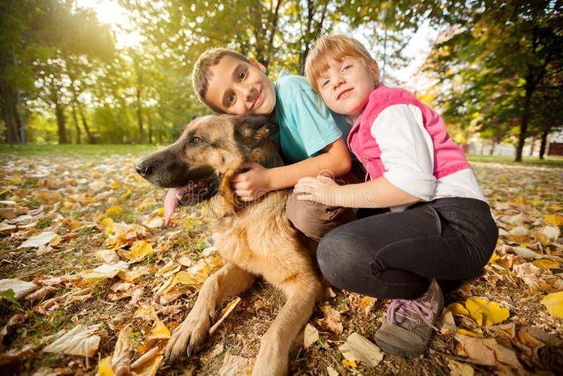 Kinderen in het park met een Duitse herder royalty-vrije stock fotografie