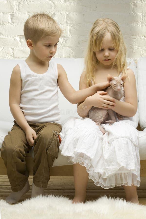 Kinderen met katje in daglicht stock afbeeldingen