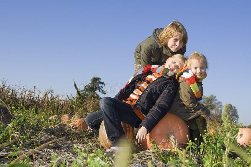 Kinderen op pompoengebied royalty-vrije stock foto