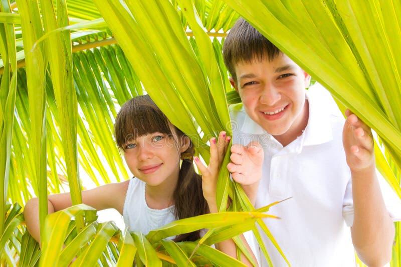 Kinderen in palmtakken stock foto's