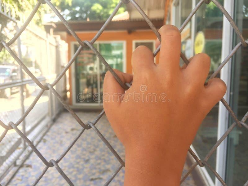Kinderen` s hand met traliewerk stock afbeeldingen