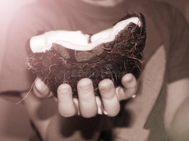 Kinderen` s handen die een kokosnoot houden stock afbeeldingen