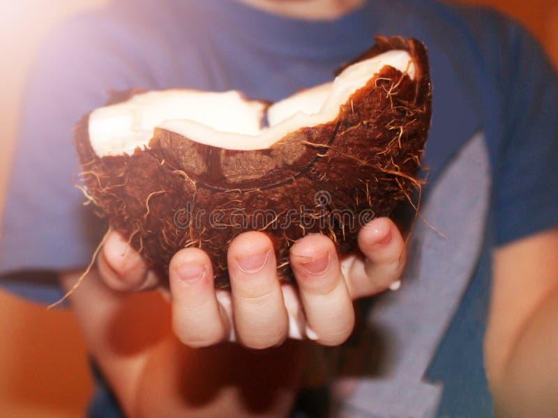 Kinderen` s handen die een kokosnoot houden royalty-vrije stock foto