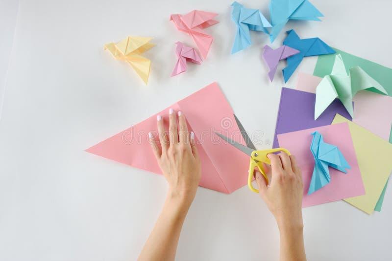 Kinderen ` s hands do origami van gekleurd document op witte achtergrond Les van origami stock foto