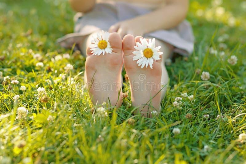Kinderfüße mit Gänseblümchen blühen auf grünem Gras stockbilder