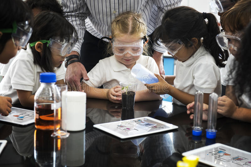Kindergartenstudenten, die Experiment pflanzend lernen lizenzfreies stockfoto