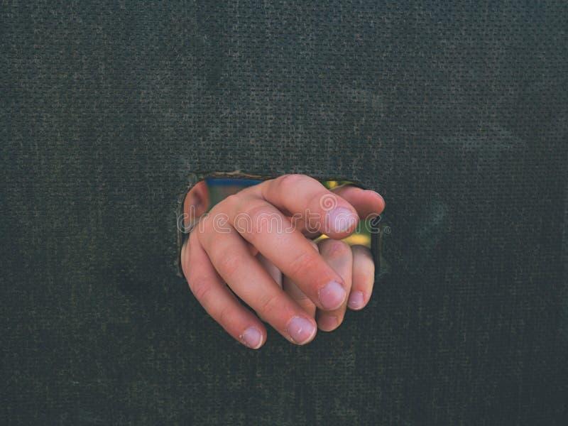 Kinderhand hält ein Loch auf dem hölzernen Kletterwand Kurzer Fingergriff durch Leiter lizenzfreie stockbilder