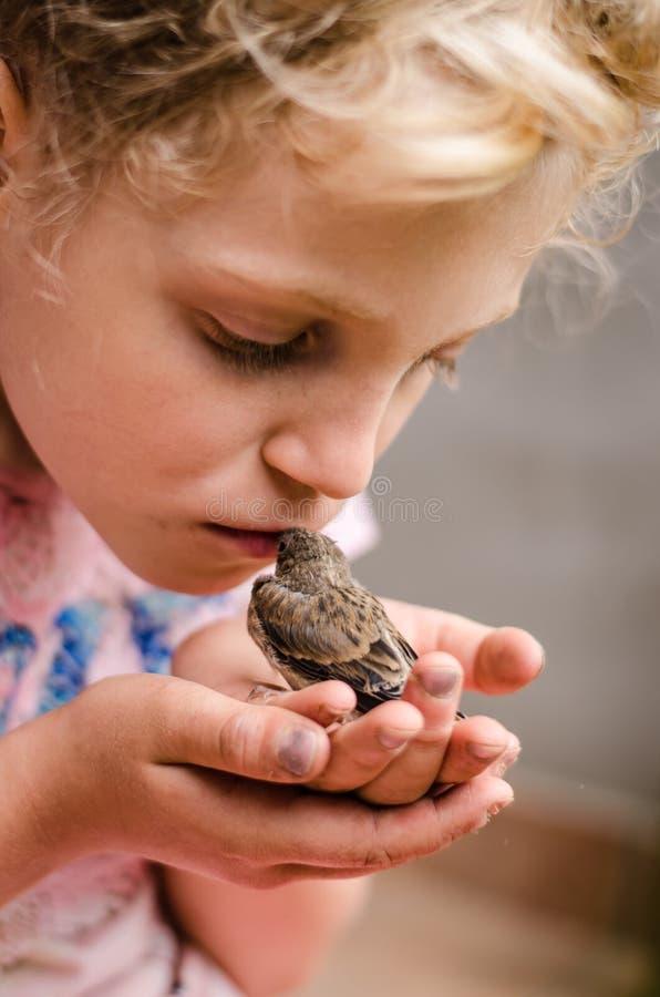 Kinderküssender Haussperling in den Händen lizenzfreie stockfotografie