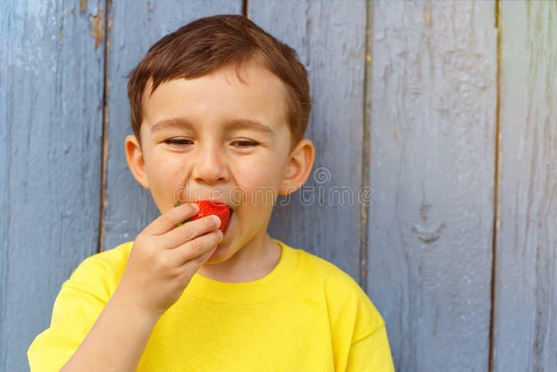 Kinderkinderkleiner Junge, der Erdbeerfrucht-Sommererdbeeren isst lizenzfreies stockbild