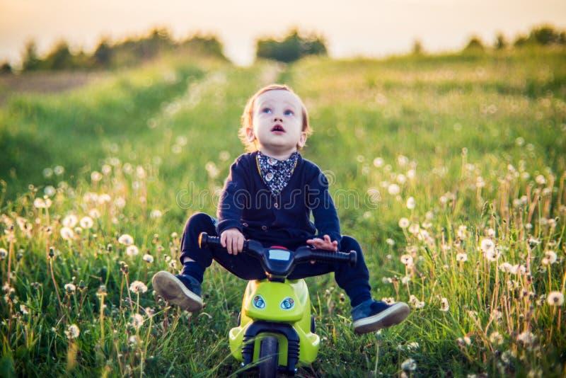 Kinderkleinkind mit Fahrrad in der Löwenzahnwiese lizenzfreie stockbilder