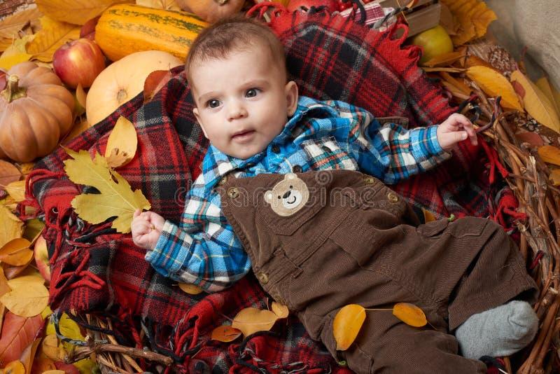 Kinderlüge auf rotem Schottenstoffplaid mit gelbem Herbstlaub, Äpfeln, Kürbis und Dekoration, Herbstsaison lizenzfreie stockfotografie
