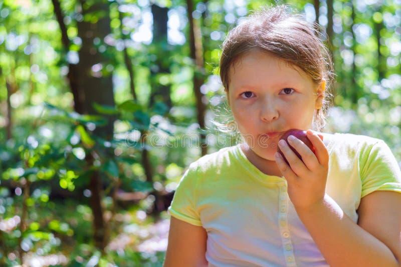 Kindermädchen, das einen roten Apfel in einem Park in der Natur isst stockbild