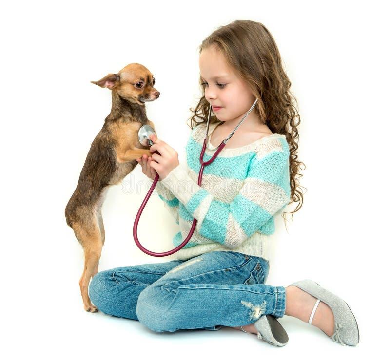 Kindermädchen, das Tierarzt mit ihrem kleinen Hund spielt lizenzfreie stockfotos