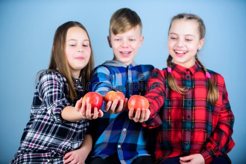 Kindern eine gesunde Diät geben Wenig Kinder, die organische Diät wählen Kinder der guten Nahrung und einer Vollkosthilfe wachsen stockbild