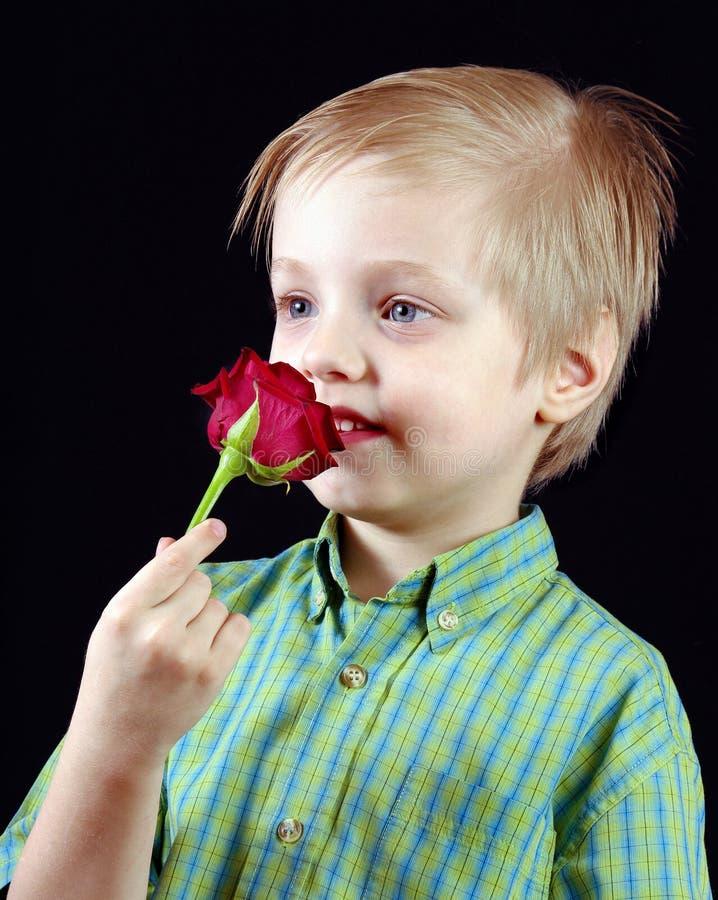 Kinderschnüffelnblume Junge mit roter Rose auf Schwarzem lizenzfreie stockfotografie