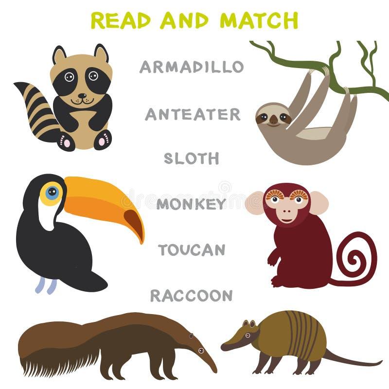 Kinderwörter, die das Spielarbeitsblatt gelesen und Match lernen Lustiges Tiere Gürteltier-Ameisenbär-Trägheits-Affe-Tukan-Waschb stock abbildung