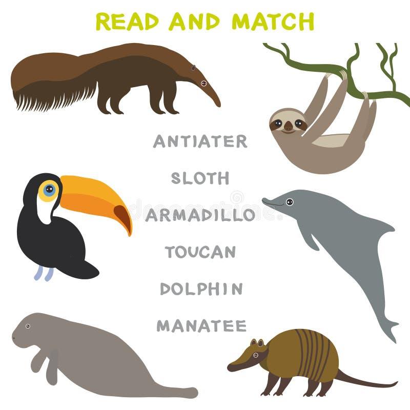 Kinderwörter, die das Spielarbeitsblatt gelesen und Match lernen Lustiges Tiere Gürteltier-Ameisenbär-Trägheits-Tukan-Delphin-Man vektor abbildung
