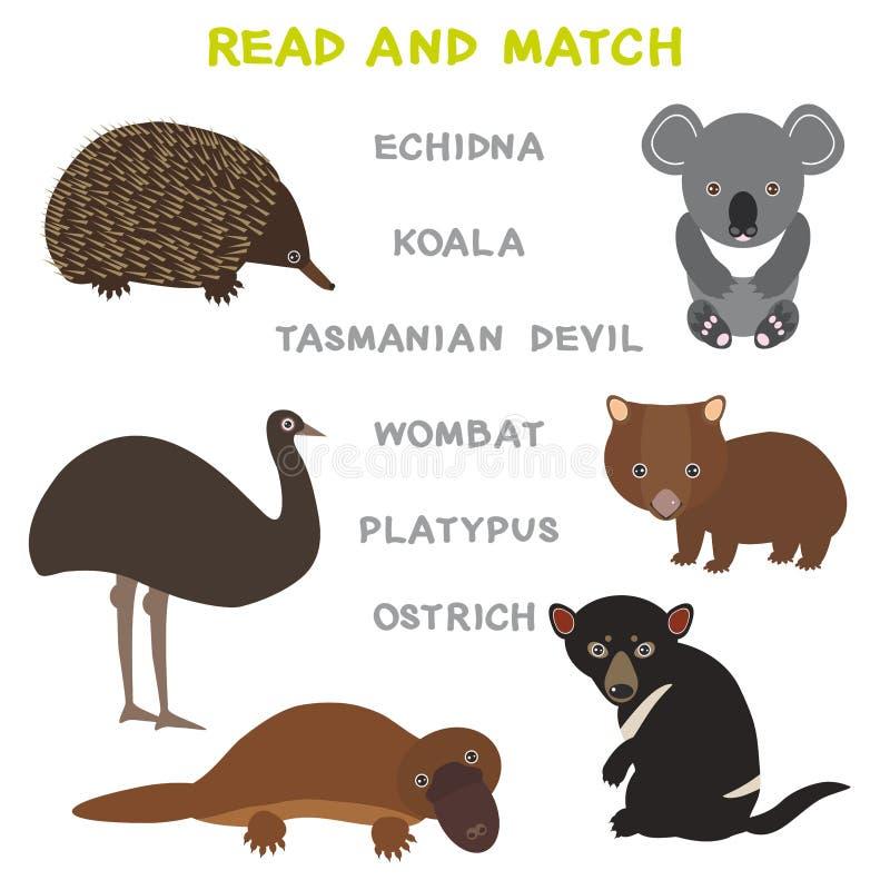 Kinderwörter, die das Spielarbeitsblatt gelesen und Match lernen Tasmanischer Teufel des lustigen Tierstrauß Echidnaschnabeltierk lizenzfreie abbildung