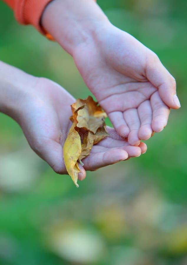Kindhände lizenzfreie stockfotografie