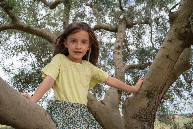 Kindmeisje die op een olijfboom beklimmen royalty-vrije stock fotografie