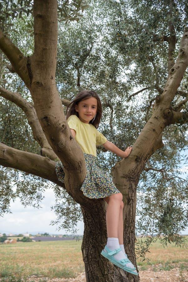 Kindmeisje die op een olijfboom beklimmen stock foto