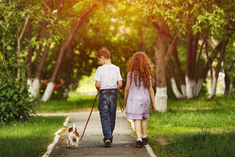 Kindvriend en puppyhond die aan het de zomerpark lopen stock foto