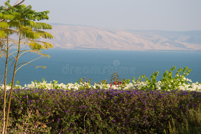 Kineret view royalty free stock images