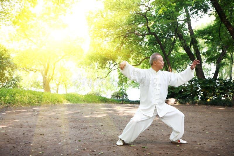 kinesen gör utvändig taichi royaltyfria bilder