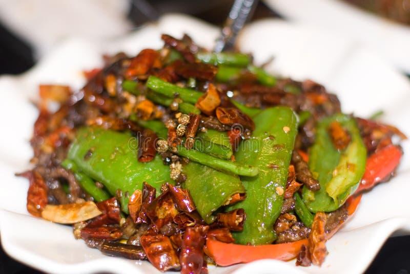 kinesisk chuan maträtt royaltyfria bilder